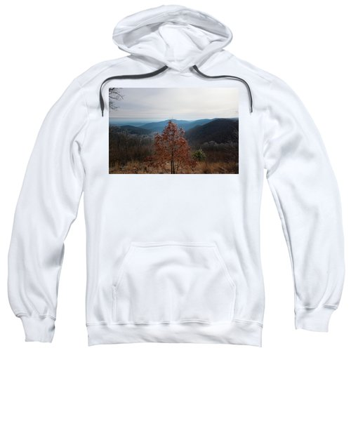 Hoarfrost On Fall Leaves Sweatshirt