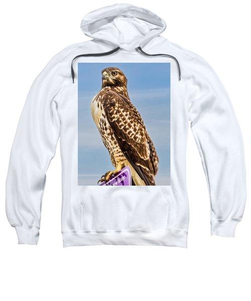 I Am Watching You Sweatshirt