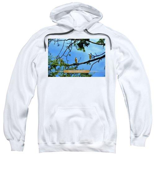 Ibis Perch - Virgin Nature Series Sweatshirt