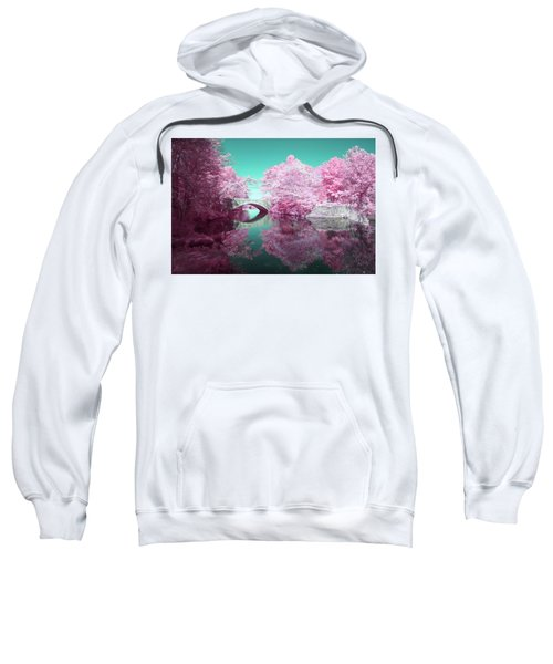 Infrared Bridge Sweatshirt