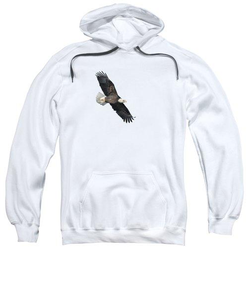 Isolated Bald Eagle 2018-2 Sweatshirt