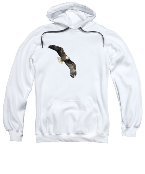 Isolated Bald Eagle 2018-4 Sweatshirt
