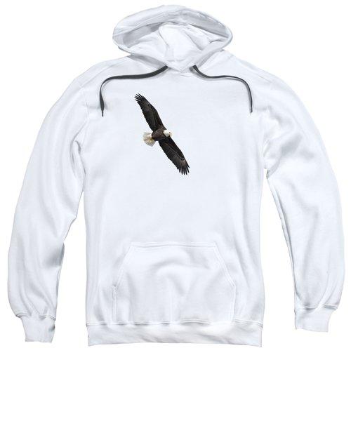 Isolated Bald Eagle 2019-1 Sweatshirt
