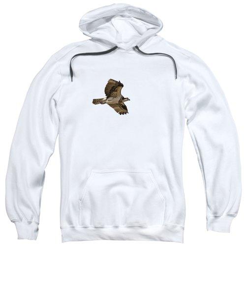 Isolated Osprey 2019-1 Sweatshirt