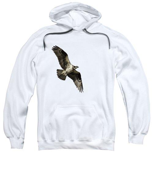 Isolated Osprey 2019-2 Sweatshirt