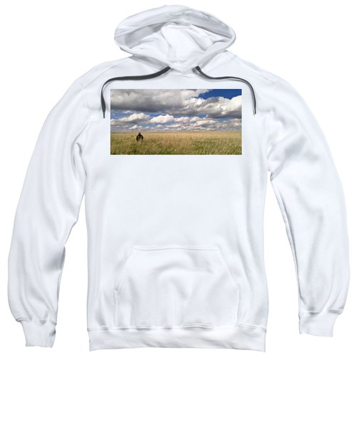 It's Amazing Here Sweatshirt