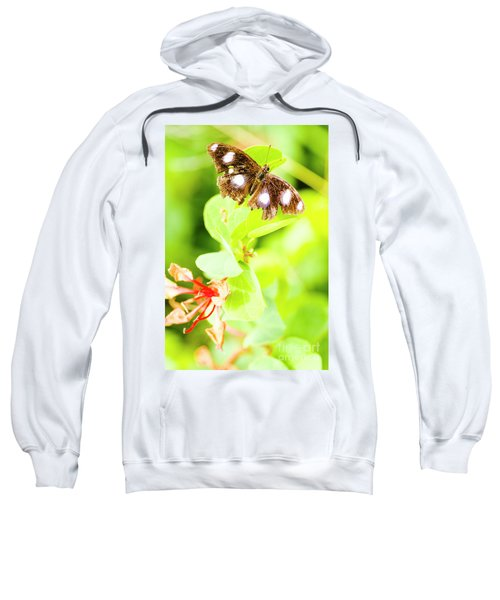 Jungle Bug Sweatshirt
