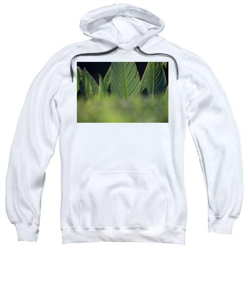 Large Dark Green Leaves Sweatshirt