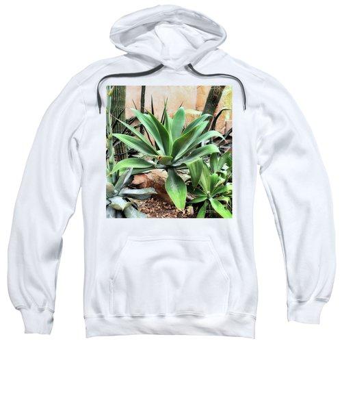 Lion's Tail Agave Sweatshirt