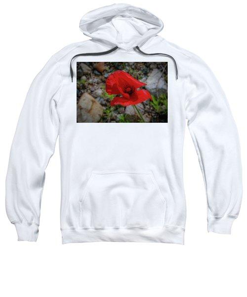 Lone Red Flower Sweatshirt