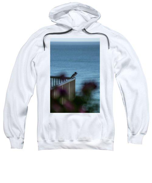 Magpie Bird Sweatshirt
