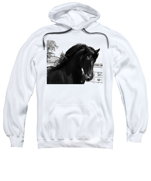 Majestic Beauty  Sweatshirt