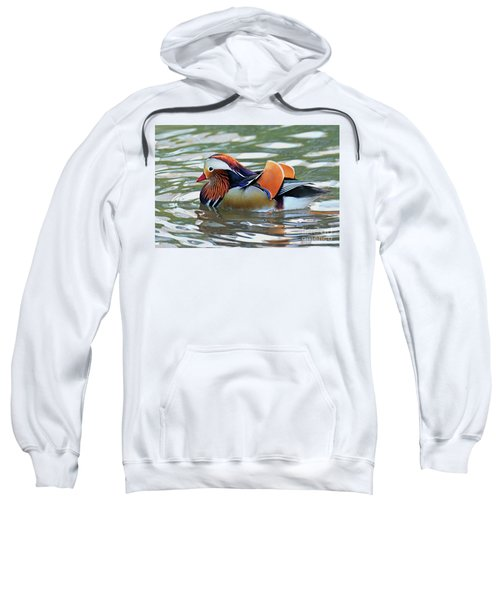Mandarin Duck- Central Park 8 Sweatshirt