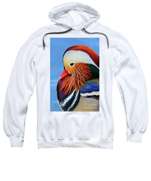 Mandarin Duck Portrait 3 Sweatshirt