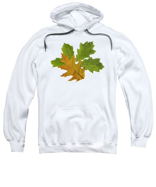 Oak Leaves Patern Sweatshirt