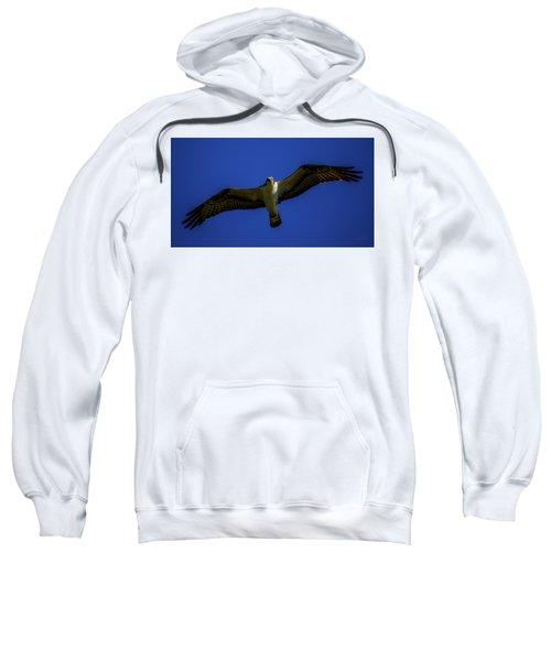 Osprey Glide In Blue Sweatshirt
