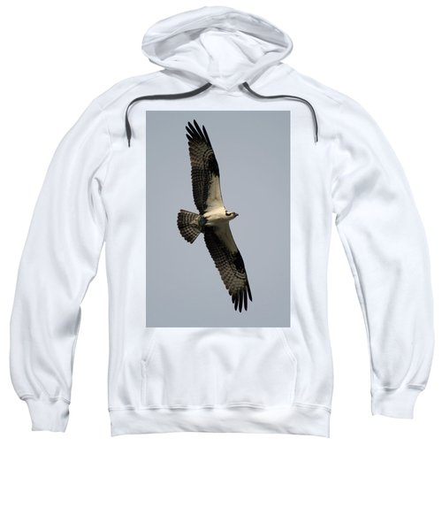 Osprey With Fish Sweatshirt