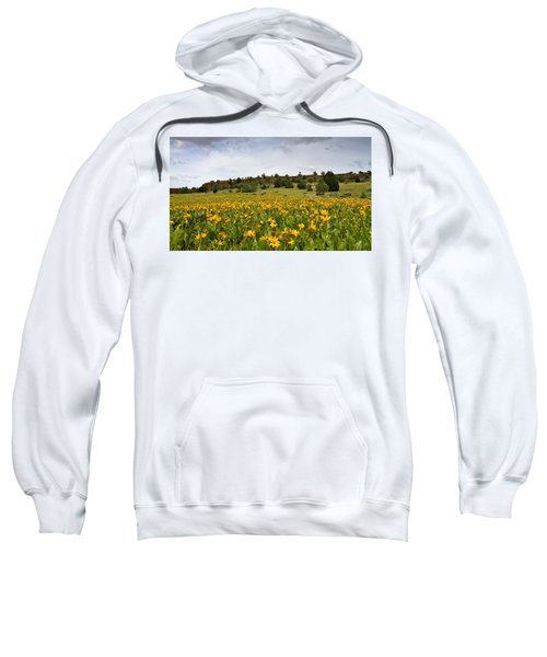 Owyhee Uplands Sweatshirt