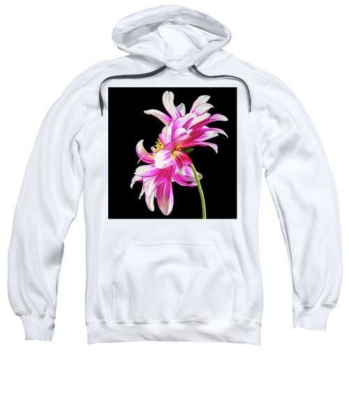 Pink Dahlia Profile Sweatshirt