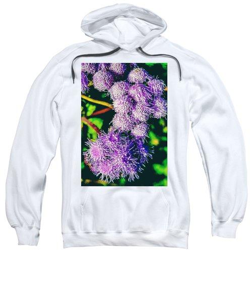 Purple Fur Sweatshirt