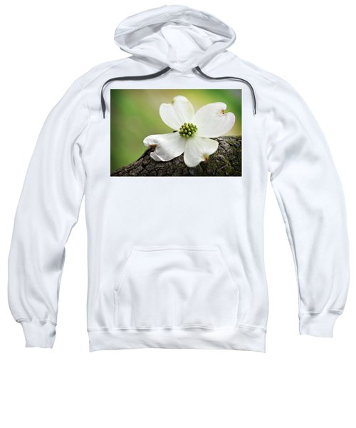 Raining Sunshine Sweatshirt
