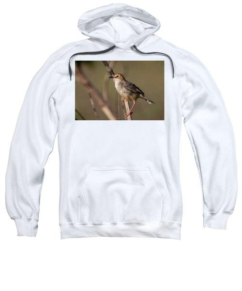 Rattling Cisticola Sweatshirt