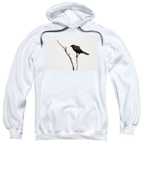Red Winged Blackbird Sweatshirt