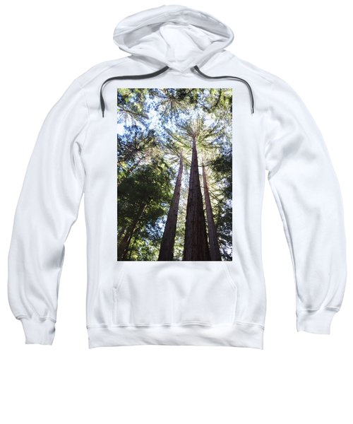 Redwoods, Blue Sky Sweatshirt