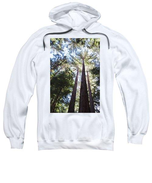 Redwoods, Blue Sky Sweatshirt