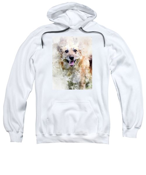 Remember The Four-legged Smile Sweatshirt
