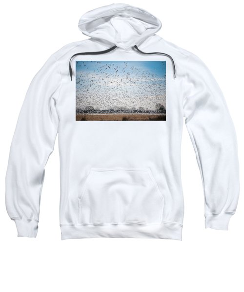 Resting On The Flyway Sweatshirt