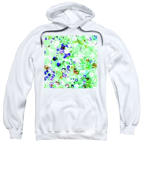 Sequins And Pins 1 Sweatshirt