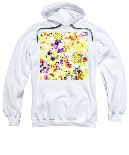 Sequins And Pins 2 Sweatshirt