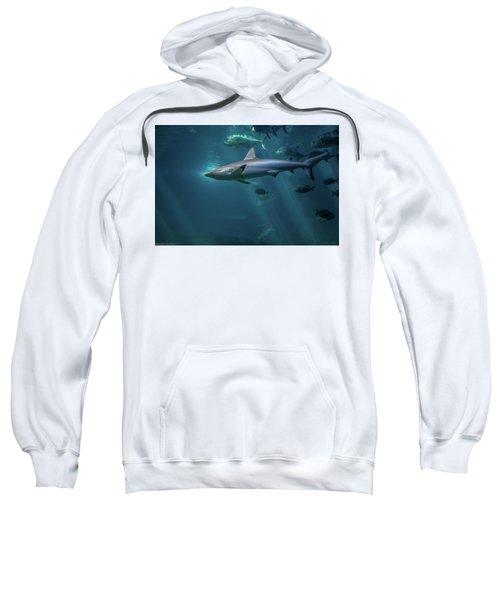 Shark Attack Sweatshirt