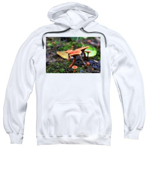 Shrooms Sweatshirt