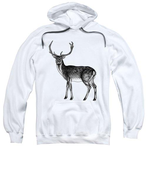 Sika Deer Stag - Ink Illustration Sweatshirt
