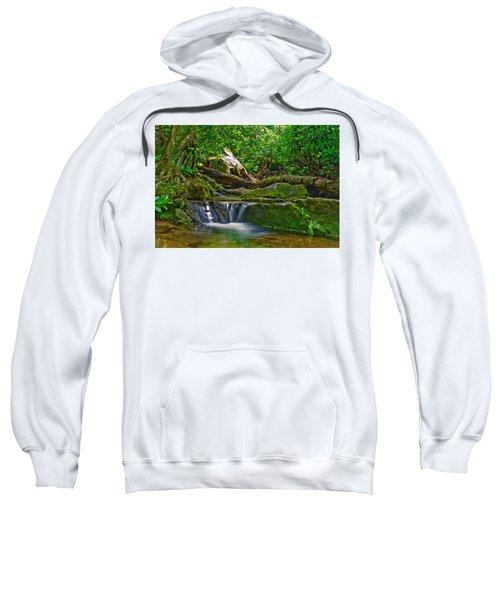 Sims Creek Waterfall Sweatshirt