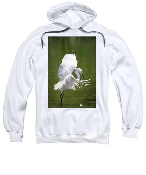 Snowy Dance Sweatshirt