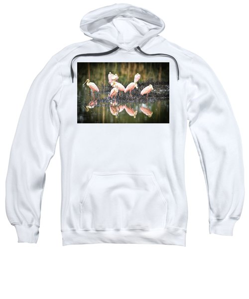 Spoonbill Reflection Sweatshirt