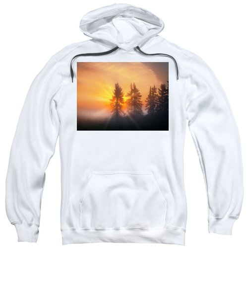 Spruce Trees In The Morning Sweatshirt