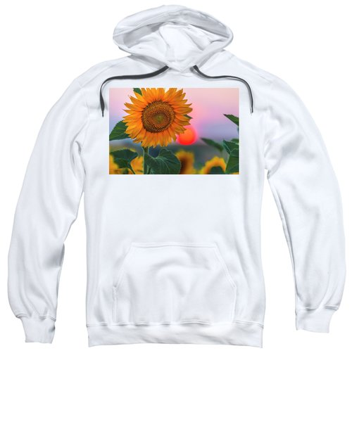 Sweatshirt featuring the photograph Sunflower by Evgeni Dinev