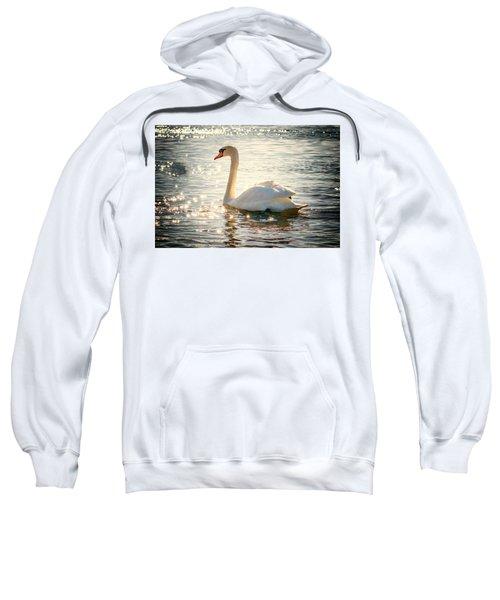 Swan On Golden Waters Sweatshirt