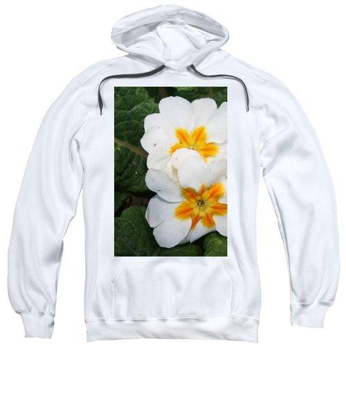 Sweet Primrose Sweatshirt