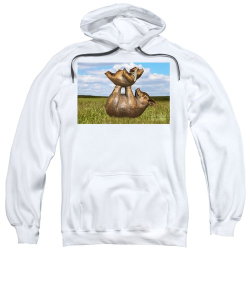 Teaching A Pig To Fly - Mother Pig In Grassy Field Holds Up Baby Pig With Flying Helmet To Teach It  Sweatshirt
