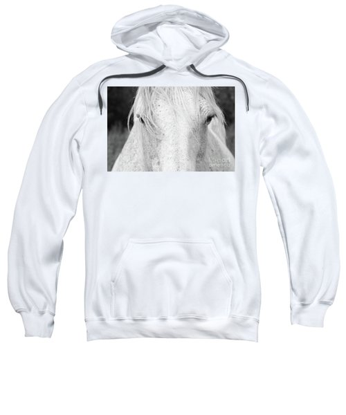 The Beauty Sweatshirt