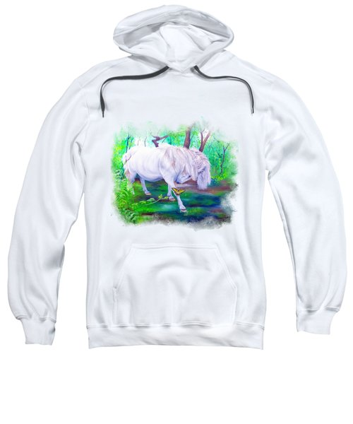 The Butterfly And The Pony Sweatshirt
