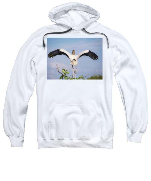 The Maestro Sweatshirt