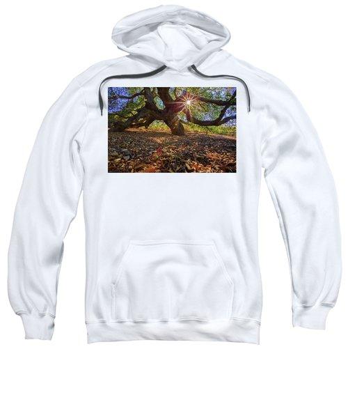 The Old Oak Sweatshirt