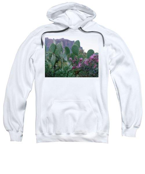 The Vibrant Desert Sweatshirt