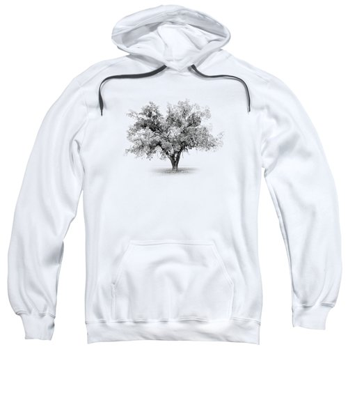 Tree In Monochrome Sweatshirt